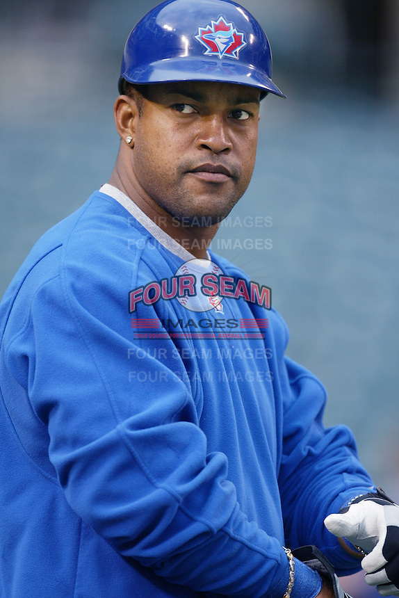 Raul Mondesi of the Toronto Blue Jays before a 2002 MLB season game against the Los Angeles Angels at Angel Stadium, in Anaheim, California. (Larry Goren/Four Seam Images)