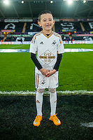 Mascots during the Barclays Premier League match between Swansea City and West Ham United played at the Liberty Stadium, Swansea  on December 20th 2015