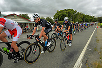 Stage two of the NZ Cycle Classic UCI Oceania Tour (Gladstone circuit) in Wairarapa, New Zealand on Thursday, 16 January 2020. Photo: Dave Lintott / lintottphoto.co.nz