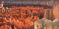 Hoodoos in Bryce Canyon at sunset