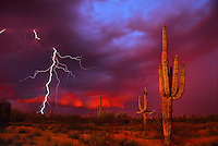 A monsoonal thunderstorm approaches from the east at sunset in the Sonoran desert outside of Phoenix Arizona. Such storms can produce dangerous flash flooding and copious amounts of lightning. (dig comp)
