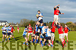 Tralee v Charleville at O'Dowd Park on Sunday
