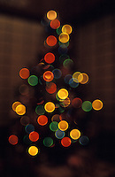 Out of focus christmas tree in Hawaii
