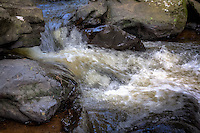 Cedar Creek along the Cedar Creek Trail in Petit Jean State Park near Morrilton Arkansas.