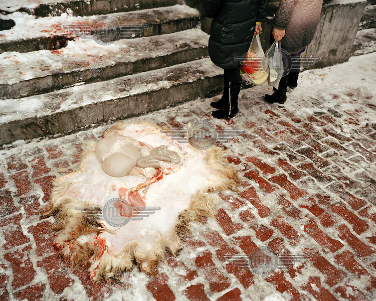 Outside a butcher's shop, a sheep's entrails lie steaming in the snow, at the Grand Bazaar in the Uighur (Uyghur) quarter of Urumqi.
