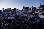 Tokyo, February 15 2011 - View over a graveyard in the Yotsuya area, Shinjuku ward.