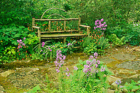 Handmade wooden bench from sticks sits in shade garden among columbine, Dames rocket and ferns