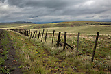 USA, Oregon, Joseph, fenceline along the road that leads to the Zumwalt Prairie Preserve in Northeast Oregon