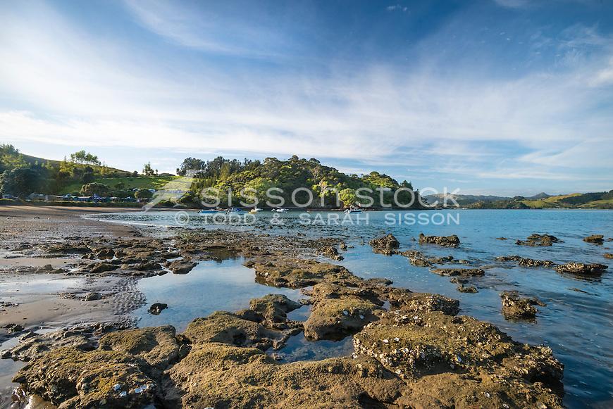 DOC campsite at Puriri Bay, Northland in summer, New Zealand - stock photo, canvas, fine art print