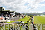 Action at the Tralee Races on Sunday