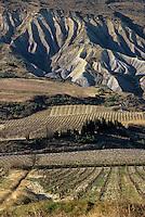 Europe/France/Languedoc-Roussillon/11/Aude/AOC Corbières: Vignoble aux environs des Pradelles-en-Val