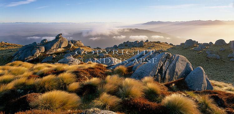 From Mount Titiroa. Fiordland National Park. New Zealand.