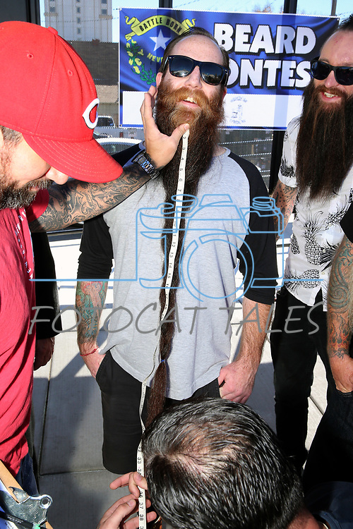 The judges measure Matt Lee from Reno in the longest beard contest in Carson City, Nev., on Saturday, October 28, 2017. <br /> Photo by Lance Iversen/Nevada Momentum