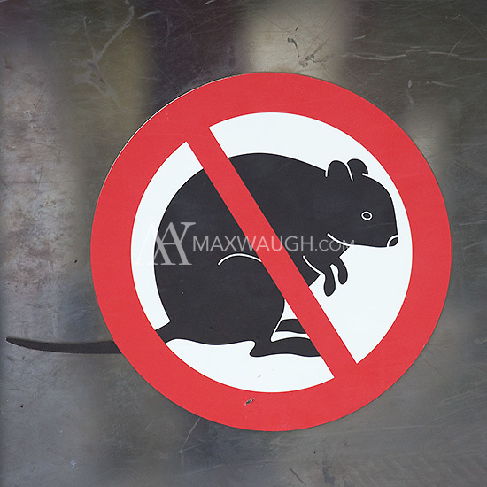 No quokkas allowed?!  How could you deny such cuteness?