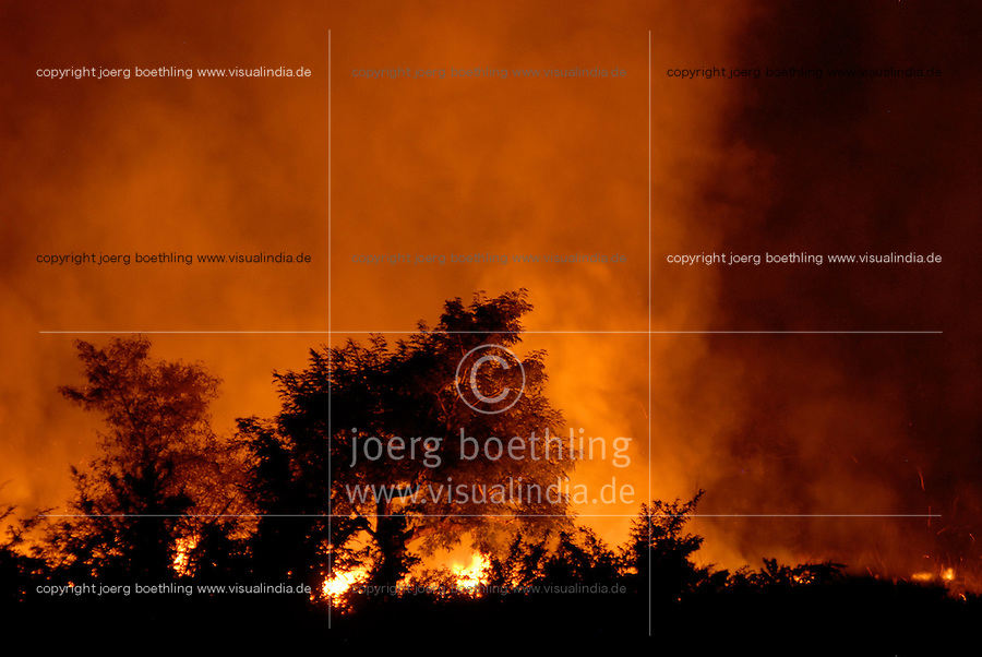 "Afrika Mali , brennender Busch , Brandrodung - Landwirtschaft Klima Klimawandel xagndaz | .Western Africa Mali bushfire to clean up area for agriculture .| [ copyright (c) Joerg Boethling / agenda , Veroeffentlichung nur gegen Honorar und Belegexemplar an / publication only with royalties and copy to:  agenda PG   Rothestr. 66   Germany D-22765 Hamburg   ph. ++49 40 391 907 14   e-mail: boethling@agenda-fototext.de   www.agenda-fototext.de   Bank: Hamburger Sparkasse  BLZ 200 505 50  Kto. 1281 120 178   IBAN: DE96 2005 0550 1281 1201 78   BIC: ""HASPDEHH"" ,  WEITERE MOTIVE ZU DIESEM THEMA SIND VORHANDEN!! MORE PICTURES ON THIS SUBJECT AVAILABLE!!  ] [#0,26,121#]"
