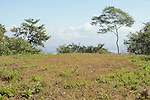 Chira Island Sceniculf Of Nicoya