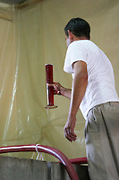 pinot noir Damien Gachot-Monot owner with measuring cylinder with must dom gachot-monot nuits-st-georges cote de nuits burgundy france