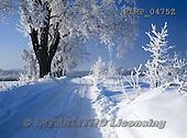 Marek, CHRISTMAS LANDSCAPES, WEIHNACHTEN WINTERLANDSCHAFTEN, NAVIDAD PAISAJES DE INVIERNO, photos+++++,PLMP0475Z,#xl#