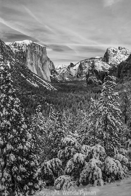 The classic view of the snow covered Yosemite Valley as a whole, made famous by Ansel Adams; taken from the tunnel viewpoint; portrait view.