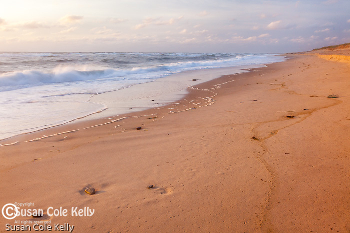 Impressions in the sand at Cape Cod National Seashore, Eastham, MA, USA