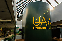 The morning sun shines through the skylights in UAA's Student Union.