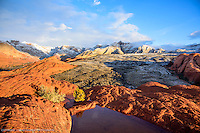 Snow Canyon, Utah