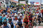 The peloton in action during Stage 4 of the 2018 Artic Race of Norway, running 145.5km from Kvalsund to Alta, Norway. 18th August 2018. <br /> <br /> Picture: ASO/Pauline Ballet | Cyclefile<br /> All photos usage must carry mandatory copyright credit (&copy; Cyclefile | ASO/Pauline Ballet)