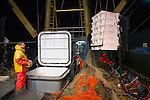 Dutch fishing vessel offloading fish caught on the North Sea
