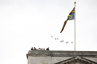 Hawk T2<br /> RAF centenary fly-past at Buckingham Palace, The Mall, London England on July 10, 2018.<br /> CAP/PL<br /> &copy;Phil Loftus/Capital Pictures