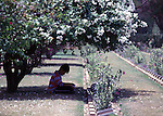 A Thai youngster reads a book in a cemetery filled with the graves of nearly 7,000 Australians and Englishmen who died  during World War II in Kanchanaburi, Thailand. Over 16,000 allied P.O.W.s died of starvation, maltreatment and disease while building the bridge on the River Kwai and a 250- mile railway from Thailand into Burma. The Bridge on the River Kwai, known to many P.O.W.'s as the bridge of sorrow, attracts thousands of tourists yearly. (Jim Bryant Photo).....