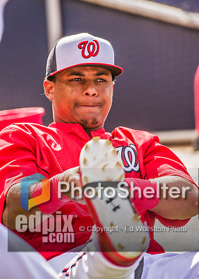 22 May 2015: Washington Nationals infielder Wilmer Difo takes stretching exercises prior to a game against the Philadelphia Phillies at Nationals Park in Washington, DC. The Nationals defeated the Phillies 2-1 in the first game of their 3-game weekend series. Mandatory Credit: Ed Wolfstein Photo *** RAW (NEF) Image File Available ***