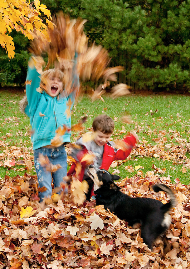 Boy,girl and dog playing in fall leaves