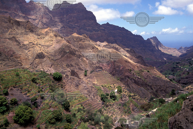 © Giacomo Pirozzi / Panos Pictures..CAPE VERDE..Terraced agriculture. The rocky terrain means much of Cape Verde is uninhabitable and farming is difficult.
