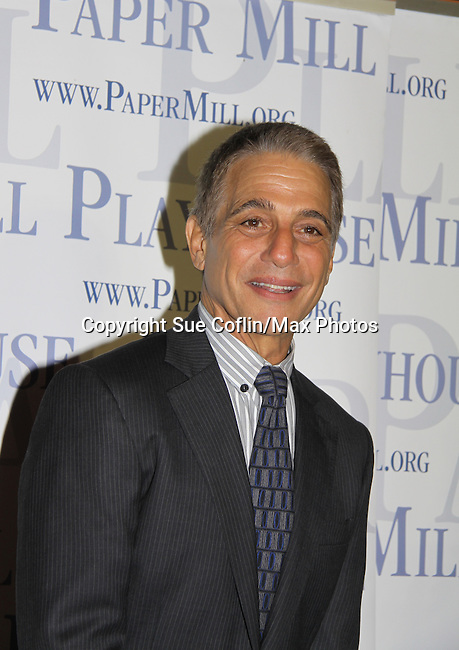 """All My Children's Tony Danza """"Erica Kane's wedding planner"""" stars in """"Honeymoon in Vegas The Musical"""" on opening night October 6, 2013 at the Paper Mill Playhouse, Millburn, New Jersey running until October 27, 2013. (Photo by Sue Coflin/Max Photos)"""