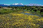 Tres Valles, Argentina 2012
