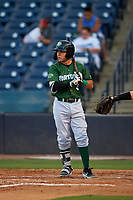 Daytona Tortugas Alejo Lopez (3) at bat during a Florida State League game against the Tampa Tarpons on May 17, 2019 at George M. Steinbrenner Field in Tampa, Florida.  Daytona defeated Tampa 8-6.  (Mike Janes/Four Seam Images)