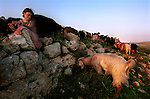 Naomi, a settler, shepherds a herd of goats near the unauthorized Israeli outpost of Givot Olam, West Bank.