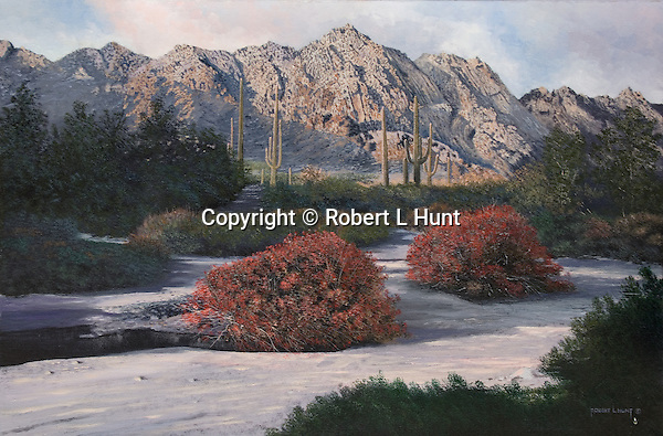 "The sunlit Tinajas Mountains in scenic Arizona desert, arid landscape grandeur with saguaro cactus in the scenery. Oil on canvas, 20""x 28""."