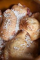 Europe/France/Midi-Pyrénées/82/Tarn-et-Garonne/Saint-Étienne-de-Tulmont: Christain Constant lors de la Cuisine du Gras - Préparation des Confits de Canard