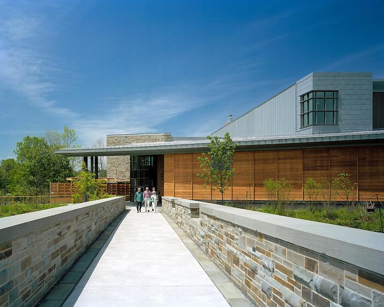 Cornell University Lab of Ornithology   Hillier
