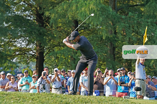 Tiger Woods (USA) tees off on the 12th hole during the second round of the 100th PGA Championship at Bellerive Country Club, St. Louis, Missouri, USA. 8/11/2018.<br /> Picture: Golffile.ie | Brian Spurlock<br /> <br /> All photo usage must carry mandatory copyright credit (© Golffile | Brian Spurlock)