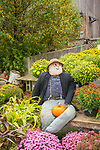 Equinox Valley Nursery, Route 7A, Manchester, Vermont  ·  (802) 362-2610. Autumn scarecrow displays.
