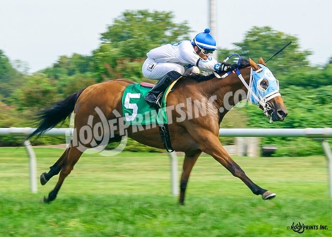 After The Cut Off winning at Delaware Park on 9/21/16