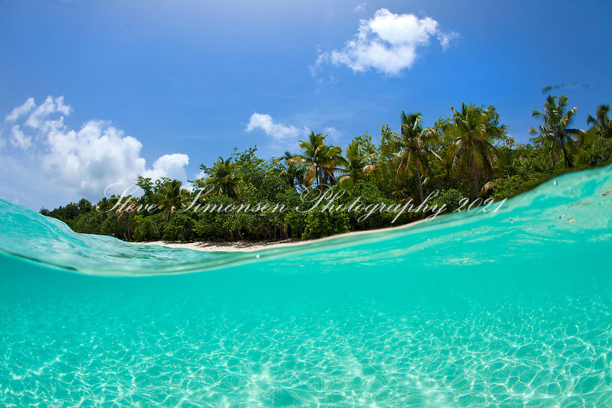 Split level image <br /> showing water, palm trees and sky<br /> Honeymoon Beach<br /> Virgin Islands National Park<br /> St. John<br /> U.S. Virgin Islands