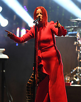 HOLLYWOOD FL - AUGUST 08: Garbage performs at Hard Rock Live held at the Seminole Hard Rock Hotel &amp; Casino on August 8, 2017 in Hollywood, Florida. <br /> CAP/MPI04<br /> &copy;MPI04/Capital Pictures