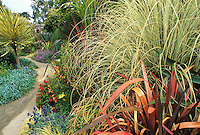 Entry garden at San Francisco Botanical Garden with Miscanthus and Phormium, colorful foliage textures