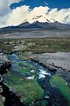 Chimborazo Mountain, Ecuador, South America, snow, river,