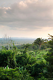 BELIZE, Punta Gorda, Toledo, view of the jungle from the Li Punit Ruins