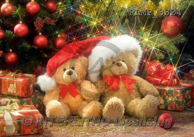 Marek, CHRISTMAS ANIMALS, WEIHNACHTEN TIERE, NAVIDAD ANIMALES, teddies, photos+++++,PLMP3324,#Xa# under Christmas tree,