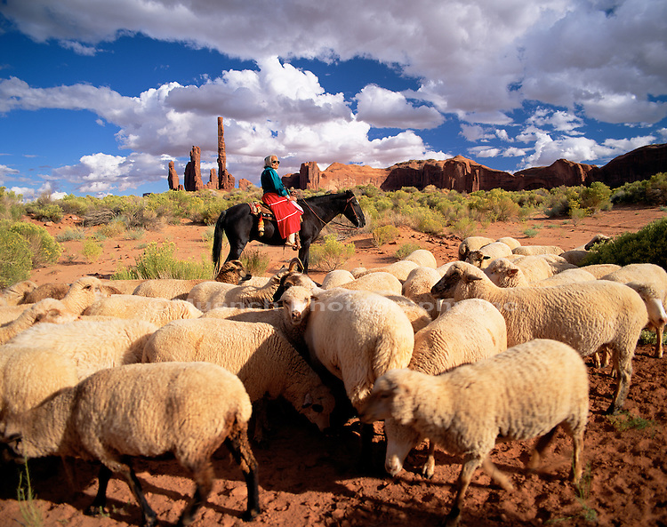 Navajo Lady herding sheep Monument Valley Navajo Tribal Park  ARIZONA